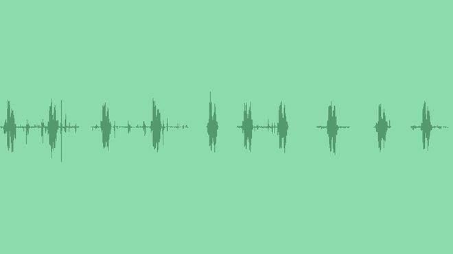 Duck: Sound Effects