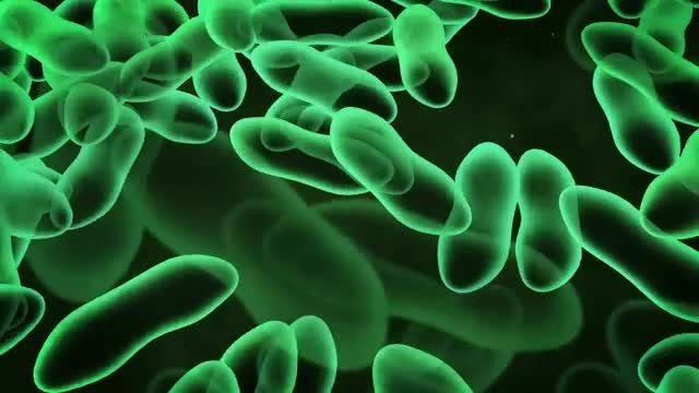 Green Virus or Bacteria: Stock Motion Graphics