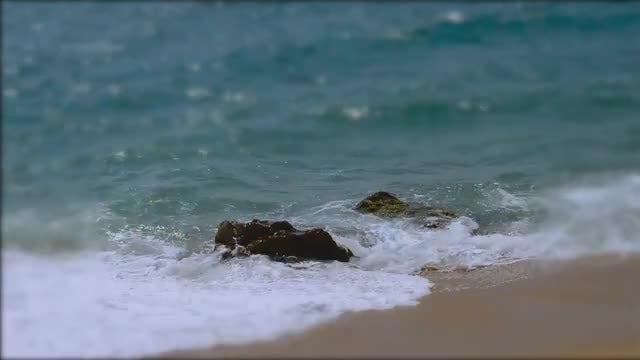 Rocks Peeking Through The Waves: Stock Video