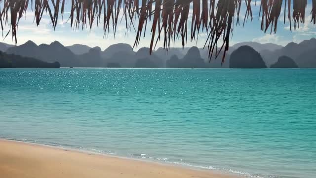Tropical Beach And Mountains: Stock Video