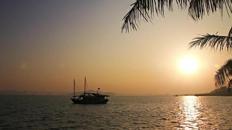 Chrome Tropical Sunset: Stock Video