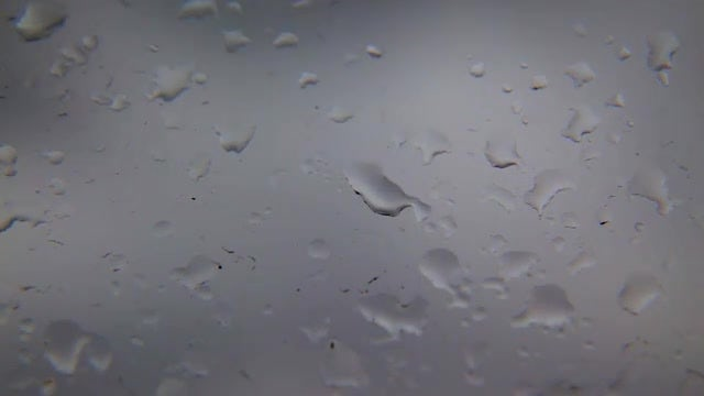 Raindrops On A Glass Window: Stock Video