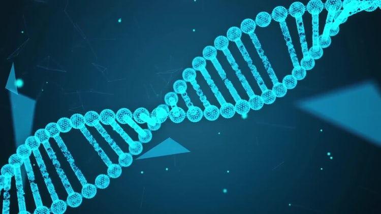 Plexus DNA Background Pack: Stock Motion Graphics