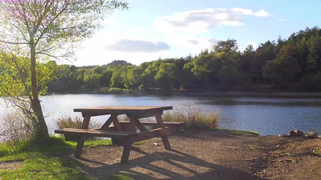 Wooden Seat By The Lake: Stock Video