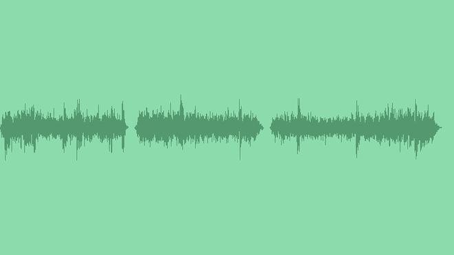 Rain, Wind And Birds: Sound Effects