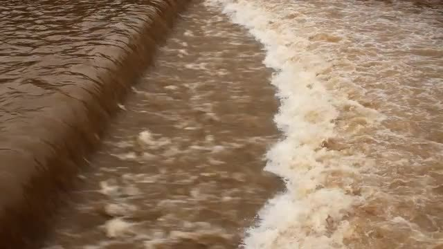 Dirty River Flowing Fast: Stock Video