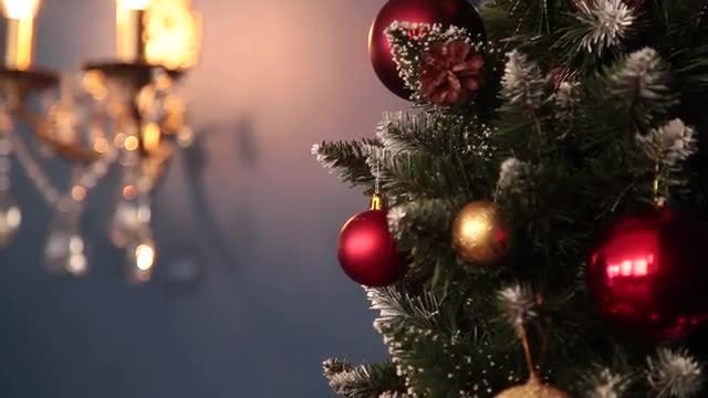 Beautiful Christmas Tree And Sconce: Stock Video