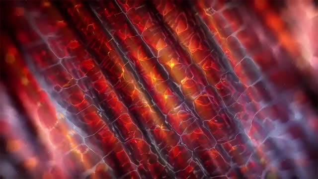 Fiery Tubes Motion Background: Stock Motion Graphics