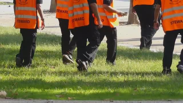 Male Stewards Walking On Grass: Stock Video