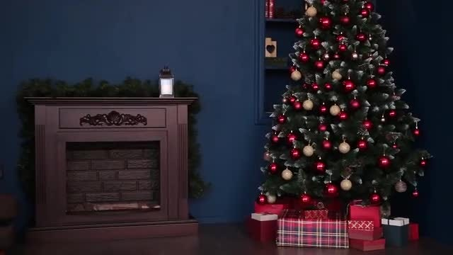 Photo Studio With Christmas Tree: Stock Video