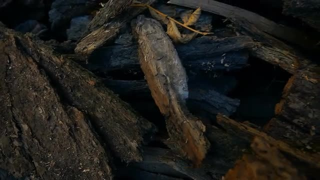 Close-up Shot Of Firewood: Stock Video
