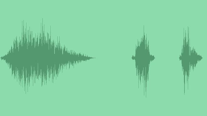 Tree Branch Swish: Sound Effects