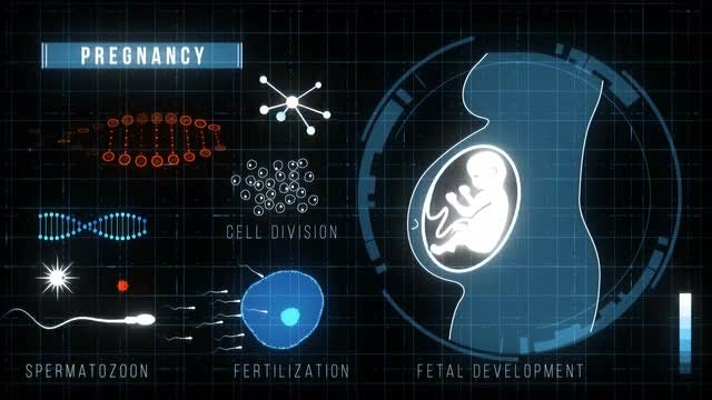 Futuristic HUD Medicine Screen: Stock Motion Graphics