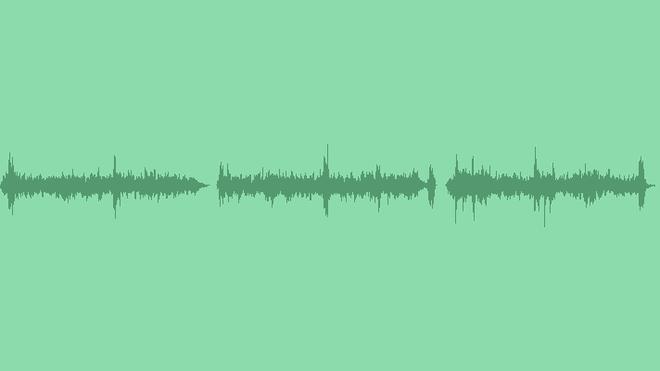 Sound Of Birds: Sound Effects
