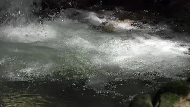Close-up Shot Of Water Flowing: Stock Video