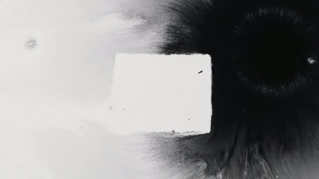 White And Black Ink Mixing: Stock Video