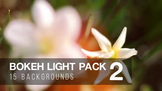 Bokeh Light Pack 2: Motion Graphics