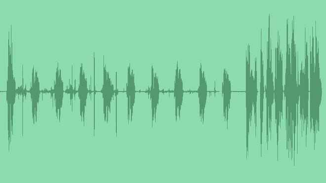 Vinyl Record: Sound Effects
