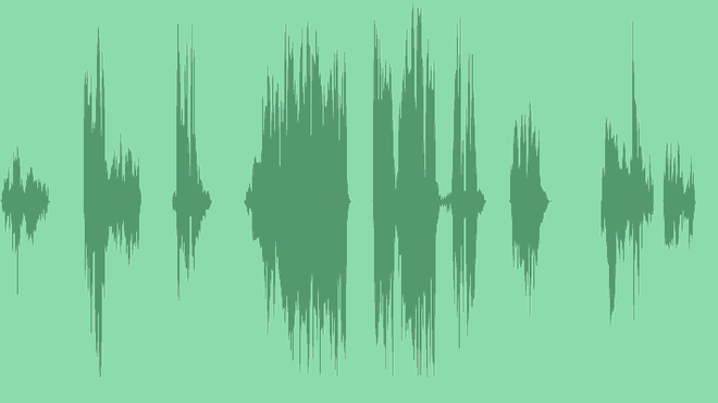 Bug Glitch Effects (7 items): Sound Effects