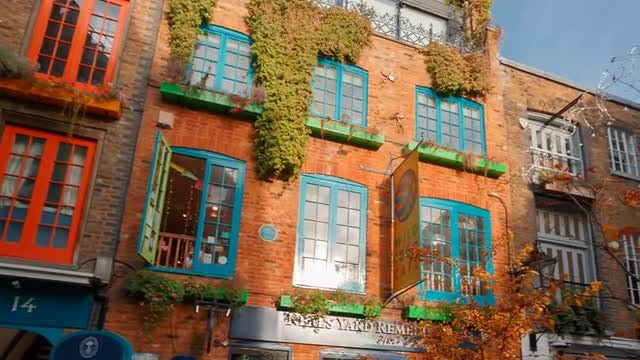 Closeup Of  Neal's Yard In London: Stock Video