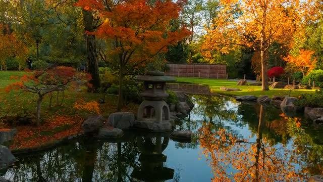 Cinematic Shot Of Japanese Landscape: Stock Video