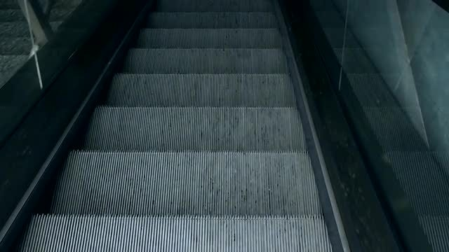 The Escalator: Stock Video