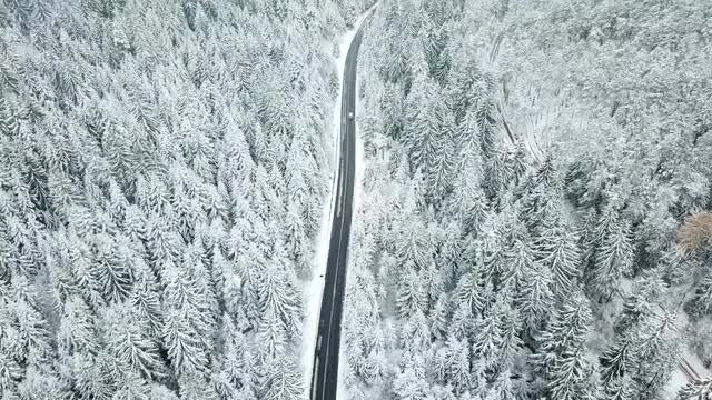 Aerial View Of Car Driving On The Mountain Road: Stock Video