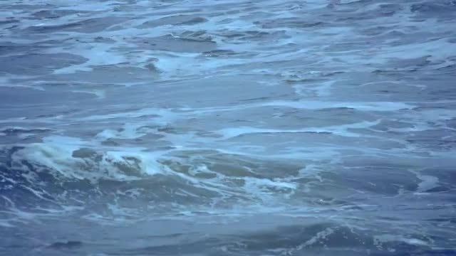 Dark Blue Waves At Sea: Stock Video