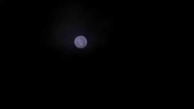 Full Moon At Night: Stock Video
