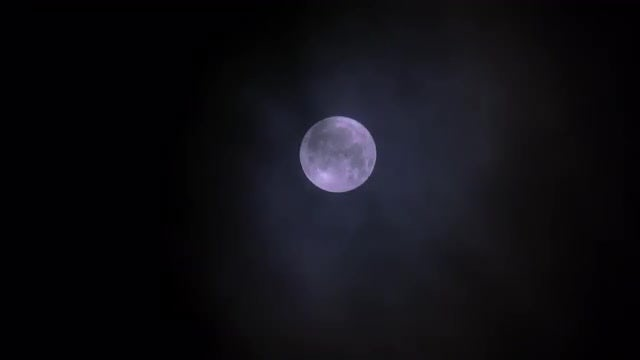 Clouds Passing Under Full Moon: Stock Video