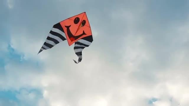 Upbeat Kite Up The Sky: Stock Video