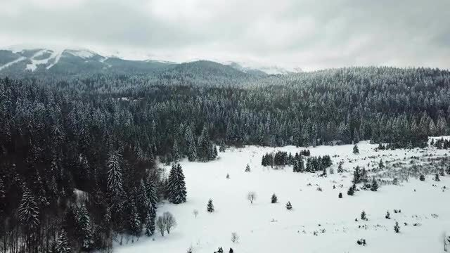 Amazing Winter Nature Aerial Shot: Stock Video