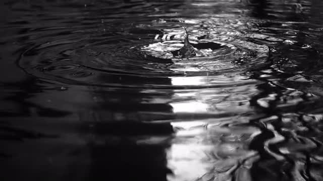 Rain Drops Water Slow Motion: Stock Video