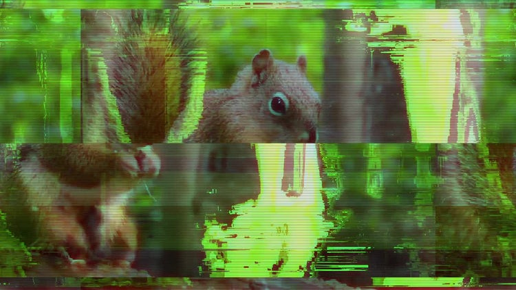 10 Glitch Transitions: After Effects Templates