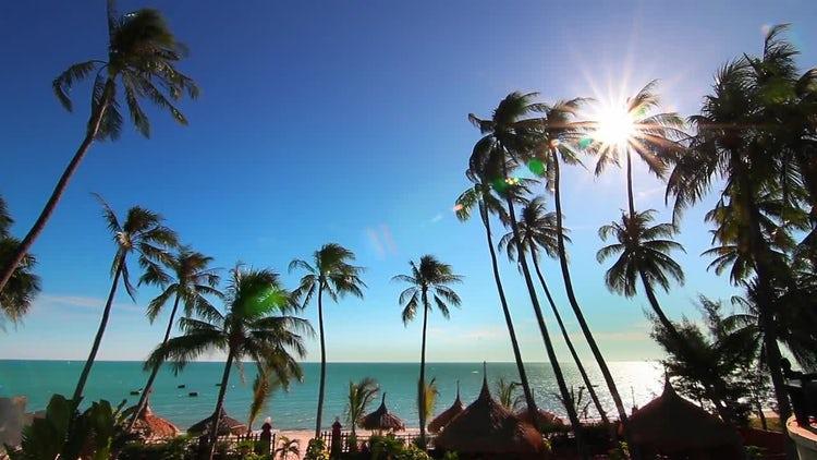 Sea Resort And Bright Sun: Stock Video