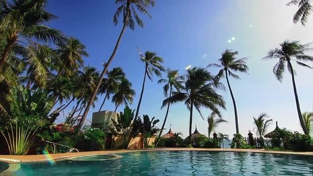 Elegant Swimming Pool: Stock Video