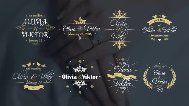 Elegant Winter Wedding Titles: After Effects Templates