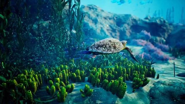 Underwater - Blue World 6: Stock Motion Graphics
