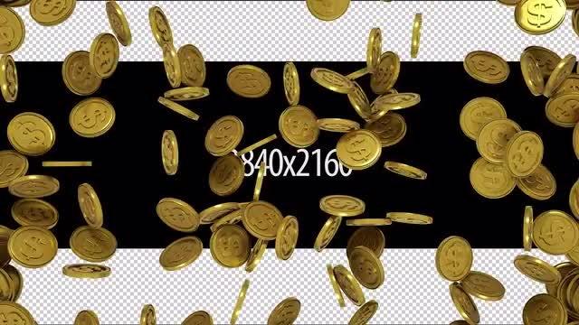 Gold Dollar Transition: Stock Motion Graphics