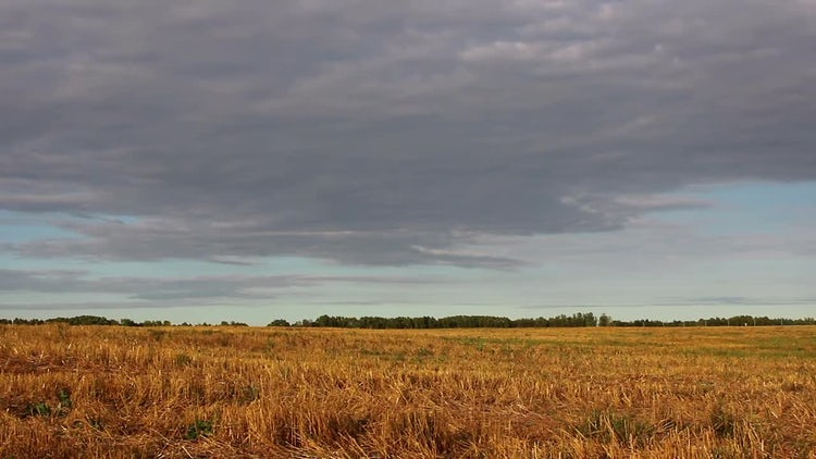 Landscape Field and Sky Timelapse: Stock Video