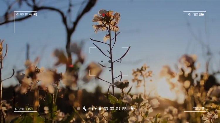 Camera Recording Screen 02: Stock Motion Graphics