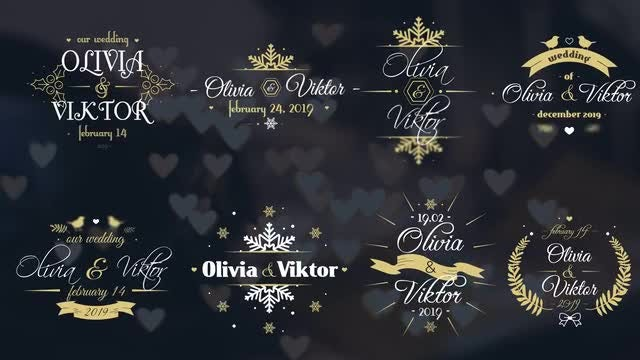 8 Winter Wedding Labels: Motion Graphics Templates