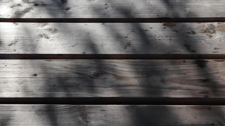 Wooden Background With Tree Shadows: Stock Video