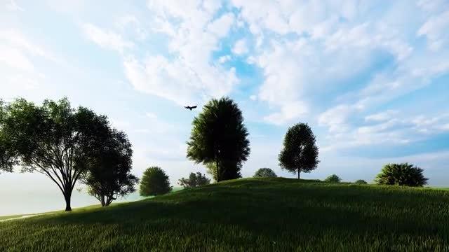 Nature Island: Stock Motion Graphics
