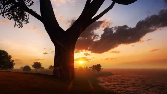 Vibrant Sunset In Nature Island: Stock Motion Graphics