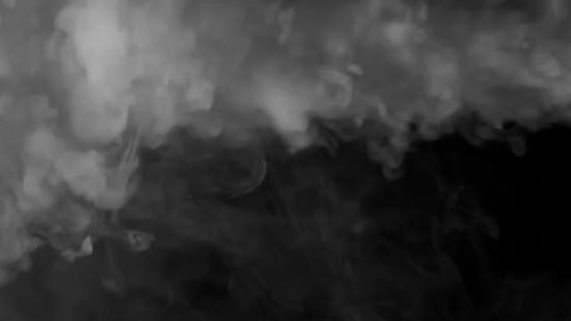 Fog: Stock Video