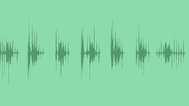 Laughing Duck: Sound Effects