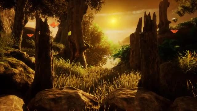 Butterflies In The Sunset Woods: Stock Motion Graphics
