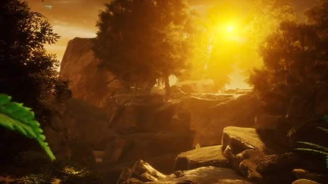 Nature In The Sunset 2: Stock Motion Graphics