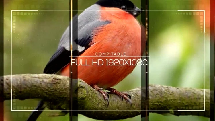 Smooth Slideshow: After Effects Templates